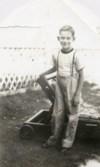 Billy Joe Armstrong photos